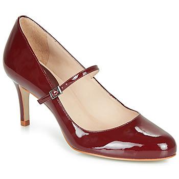 Sapatos Mulher Escarpim André LUCIOLLE Bordô