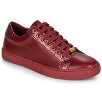 Sapatos Mulher Sapatilhas André BERKELEY Bordô
