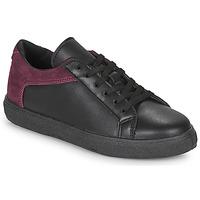 Sapatos Mulher Sapatilhas André BAILA Preto