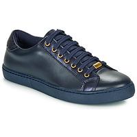 Sapatos Mulher Sapatilhas André BERKELEY Azul