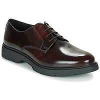 Sapatos Homem Sapatos André CHAD Bordô