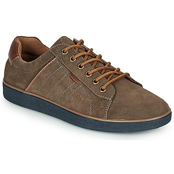 Sapatos Homem Sapatilhas André ELTON Cáqui