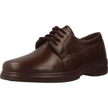Sapatos Homem Sapatos Pinosos 5975 H Marron