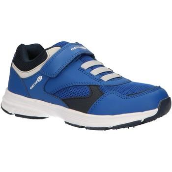 Sapatos Rapaz Multi-desportos Geox J845GA 0BC14 J HOSHIKO Azul