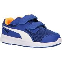 Sapatos Criança Multi-desportos Puma 190327 ESCAPER MESH Azul