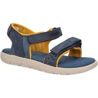 Sapatos Criança Sandálias Timberland A24J7 NUBBLE Azul