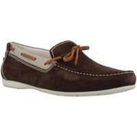 Sapatos Homem Sapato de vela Stonefly SUNNY 5 Marron