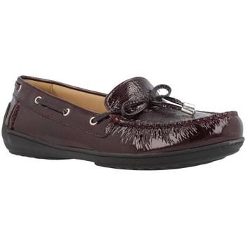 Sapatos Mulher Sapato de vela Geox D JAMILAH 2FIT Marron