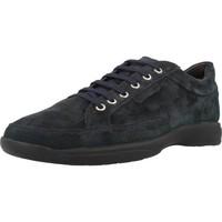 Sapatos Homem Sapatilhas Stonefly SEASON II Azul