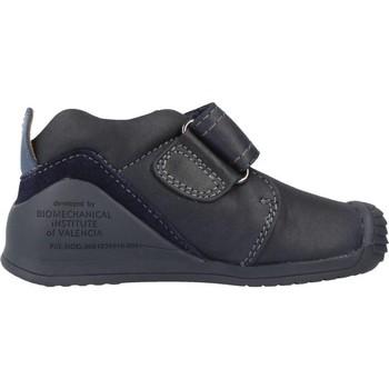 Sapatos Rapaz Botas baixas Biomecanics 161147 Azul