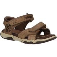 Sapatos Criança Sandálias Timberland 2180A OAK Beige