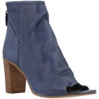 Sapatos Mulher Botins Elvio Zanon B2511X Azul