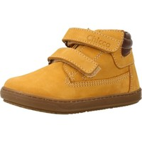 Sapatos Rapaz Botas baixas Chicco GALIS Marron