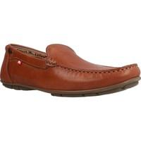 Sapatos Homem Mocassins Fluchos 9083F Marron