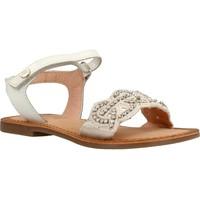 Sapatos Rapariga Sandálias Gioseppo 45035G Branco