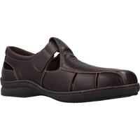 Sapatos Homem Sandálias Pinosos 6008H Marron