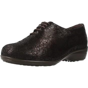 Sapatos Mulher Sapatos Pinosos 7667 G Marron