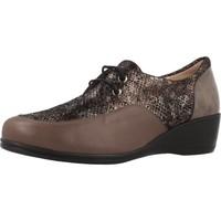 Sapatos Mulher Sapatos Argenta 30251 Marron