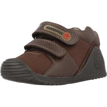 Sapatos Rapaz Sapatilhas Biomecanics 181145 Marron