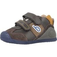 Sapatos Rapaz Sapatilhas de cano-alto Biomecanics 181155 Cinza