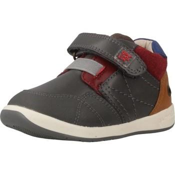 Sapatos Rapaz Sapatilhas Garvalin 181321 Cinza