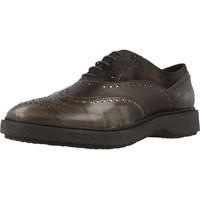 Sapatos Mulher Sapatos Geox D PRESTYN Marron