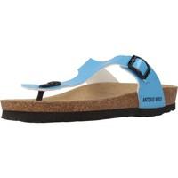 Sapatos Mulher Chinelos Antonio Miro 316602 Azul