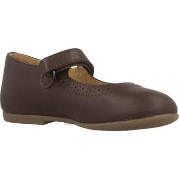 Sapatos Rapariga Sapatos & Richelieu Chicco CASTY Marron