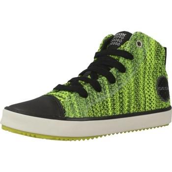 Sapatos Rapaz Sapatilhas de cano-alto Geox J ALONISSO B. F Verde