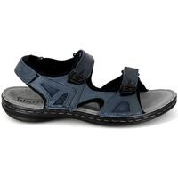 Sapatos Homem Sandálias desportivas TBS Berric Marine Azul