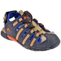 Sapatos Rapaz Sandálias Lumberjack  Azul