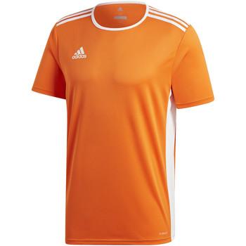 Textil Rapaz T-Shirt mangas curtas adidas Originals - T-shirt arancione CD8366 ARANCIONE