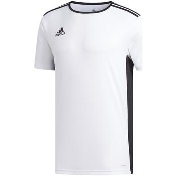 Textil Rapaz T-Shirt mangas curtas adidas Originals - T-shirt bianco CD8438 J BIANCO
