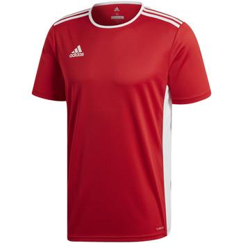 Textil Rapaz T-Shirt mangas curtas adidas Originals - T-shirt rosso CF1038 ROSSA