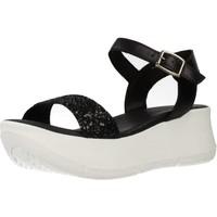 Sapatos Mulher Sandálias Clover 15741C Preto