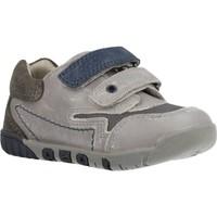 Sapatos Rapaz Sapatilhas Chicco 1060451 Cinza