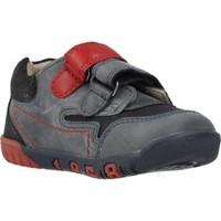 Sapatos Rapaz Sapatilhas Chicco 1060451 Azul