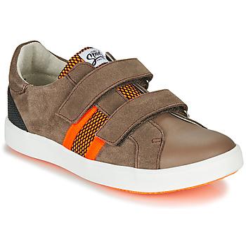 Sapatos Rapaz Sapatilhas GBB AVEDON Castanho