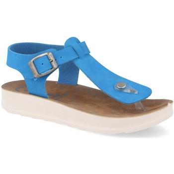Sapatos Mulher Sandálias Ainy HG22-384 Azul
