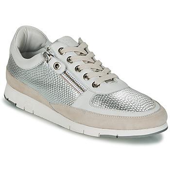 Sapatos Mulher Sapatilhas TBS CAVANNA Prateado / Bege