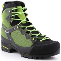 Sapatos Homem Sapatos de caminhada Salewa MS Raven 3 Gtx Preto, Verde