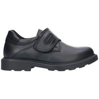 Sapatos Rapaz Sapatos Pablosky 715110 Niño Negro noir
