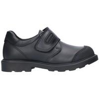 Sapatos Rapaz Sapatos Pablosky 715410 Niño Negro noir
