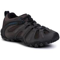 Sapatos Mulher Sapatos de caminhada Merrell Chameleon II STRETCH - BELUGA Cinza