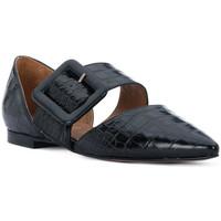 Sapatos Mulher Sabrinas Priv Lab COCCO NERO Nero