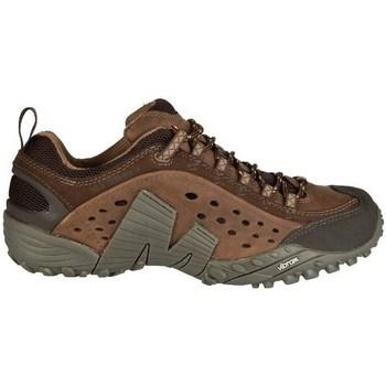 Sapatos Homem Sapatilhas Merrell Intercept Castanho
