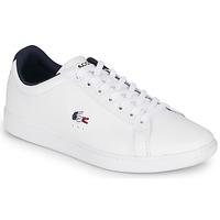 Sapatos Homem Sapatilhas Lacoste CARNABY EVO TRI1 SMA Branco