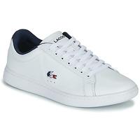 Sapatos Mulher Sapatilhas Lacoste CARNABY EVO TRI 1 SFA Branco / Marinho / Vermelho