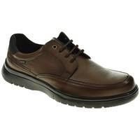 Sapatos Homem Sapatos Baerchi 5051 Marrón