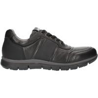 Sapatos Homem Sapatilhas Nero Giardini A800482U Preto